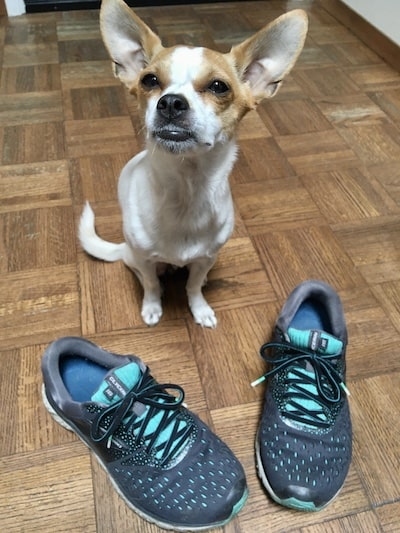 brooks glycerin shoes review
